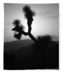 New Photographic Art Print For Sale Joshua Tree At Sunset Black And White Fleece Blanket