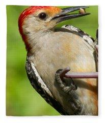 Red Bellied Woodpecker Fleece Blanket