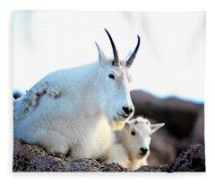 Rocky Mountain Goats - Nanny And Kid Fleece Blanket