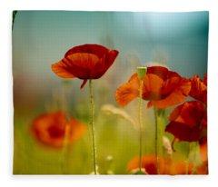 Summer Poppy Fleece Blanket