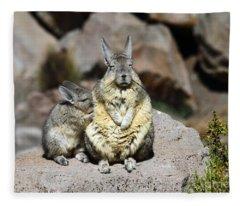 Viscacha Love Fleece Blanket