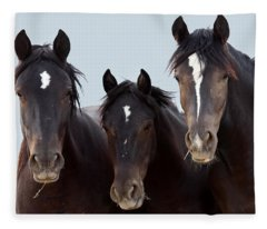 3 Amigos Wild Mustang Fleece Blanket