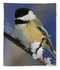 Winter Chickadee... Fleece Blanket