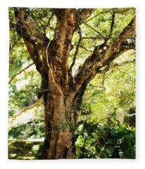Kingdom Of The Trees. Peradeniya Botanical Garden. Sri Lanka Fleece Blanket