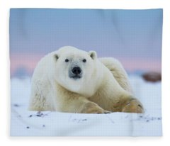 Polar Bear  Ursus Maritimus Fleece Blanket