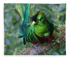 Quetzal Fleece Blanket