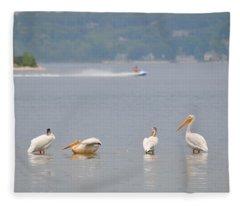4 Pelicans Fleece Blanket
