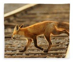 Red Fox Fleece Blanket