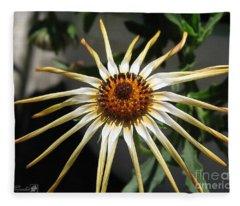 Osteospermum Named African Moon Fleece Blanket