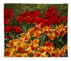Red And Yellow Tulips Fleece Blanket