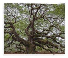 Sc Angel Oak Tree Fleece Blanket