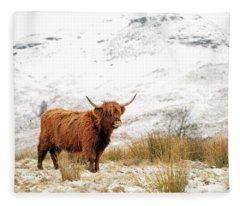Scottish Highlands Fleece Blankets