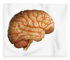 Human Brain Fleece Blanket