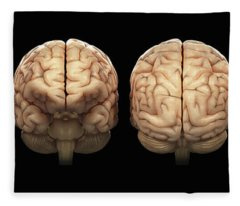 The Human Brain Fleece Blanket