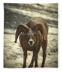 Rocky Mountain Bighorn Sheep Fleece Blankets