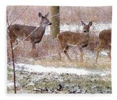 A Dusting On The Deer Fleece Blanket