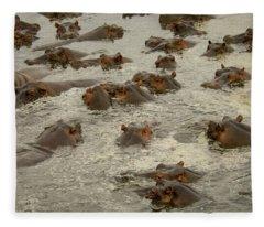 A Pod Of Hippos In Water Fleece Blanket