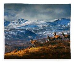 Above Strathglass Fleece Blanket