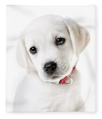 Adorable Yellow Lab Puppy Fleece Blanket
