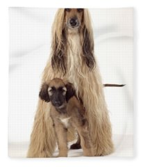 Afghan Hound And Puppy Fleece Blanket