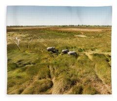Africa, Botswana, Moremi Game Reserve Fleece Blanket
