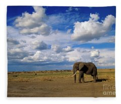 African Elephant Walking Masai Mara Fleece Blanket