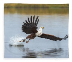African Fish Eagle Fishing Chobe River Fleece Blanket