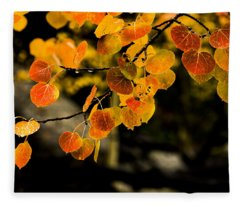 After Rain Fleece Blanket