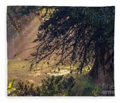 Afternoon Sunrays Fleece Blanket