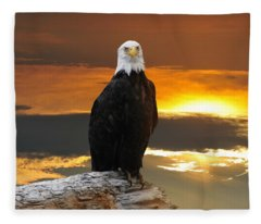 Alaskan Bald Eagle At Sunset Fleece Blanket