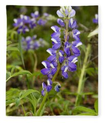 Alaskan Lupine In Denali Park Fleece Blanket