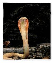 Albino Monocled Cobra Naja Naja Fleece Blanket