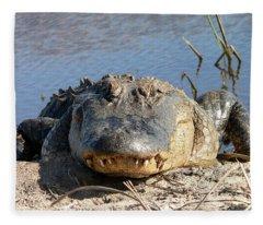 Alligator Approach Fleece Blanket