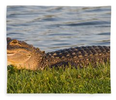 Alligator Smile Fleece Blanket