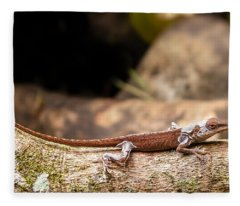 Aloha Anole   Fleece Blanket