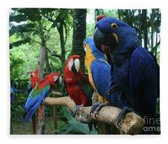 Aloha Kaua Aloha Mai No Aloha Aku Beautiful Macaw Fleece Blanket