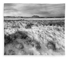 Altiplano And Mt Illimani In Winter Fleece Blanket