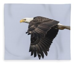 American Bald Eagle 2015-19 Fleece Blanket