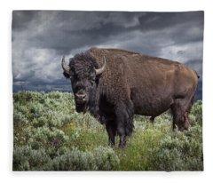 American Buffalo Or Bison In Yellowstone Fleece Blanket