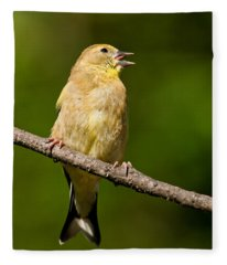 American Goldfinch Singing Fleece Blanket