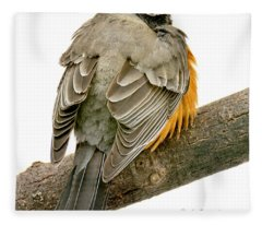 American Robin Male Animal Portrait Fleece Blanket