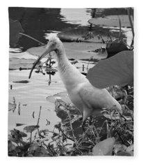 American White Ibis Black And White Fleece Blanket