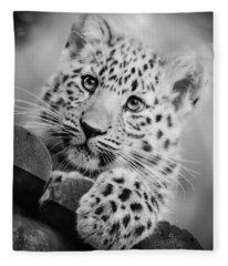 Amur Leopard Cub Portrait Fleece Blanket