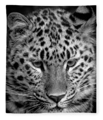 Amur Leopard In Black And White Fleece Blanket