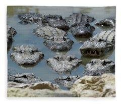An America Alligators In Swamp Fleece Blanket