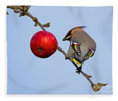 An Apple A Day... Fleece Blanket