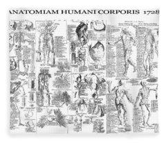 Anatomy Of The Human Body  1728 Fleece Blanket