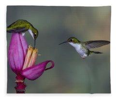 Andean Emerald Hummingbirds Fleece Blanket