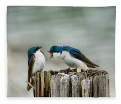 Angry Swallow Fleece Blanket