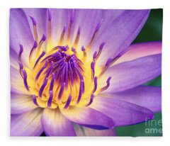 Ao Lani Heavenly Light Fleece Blanket